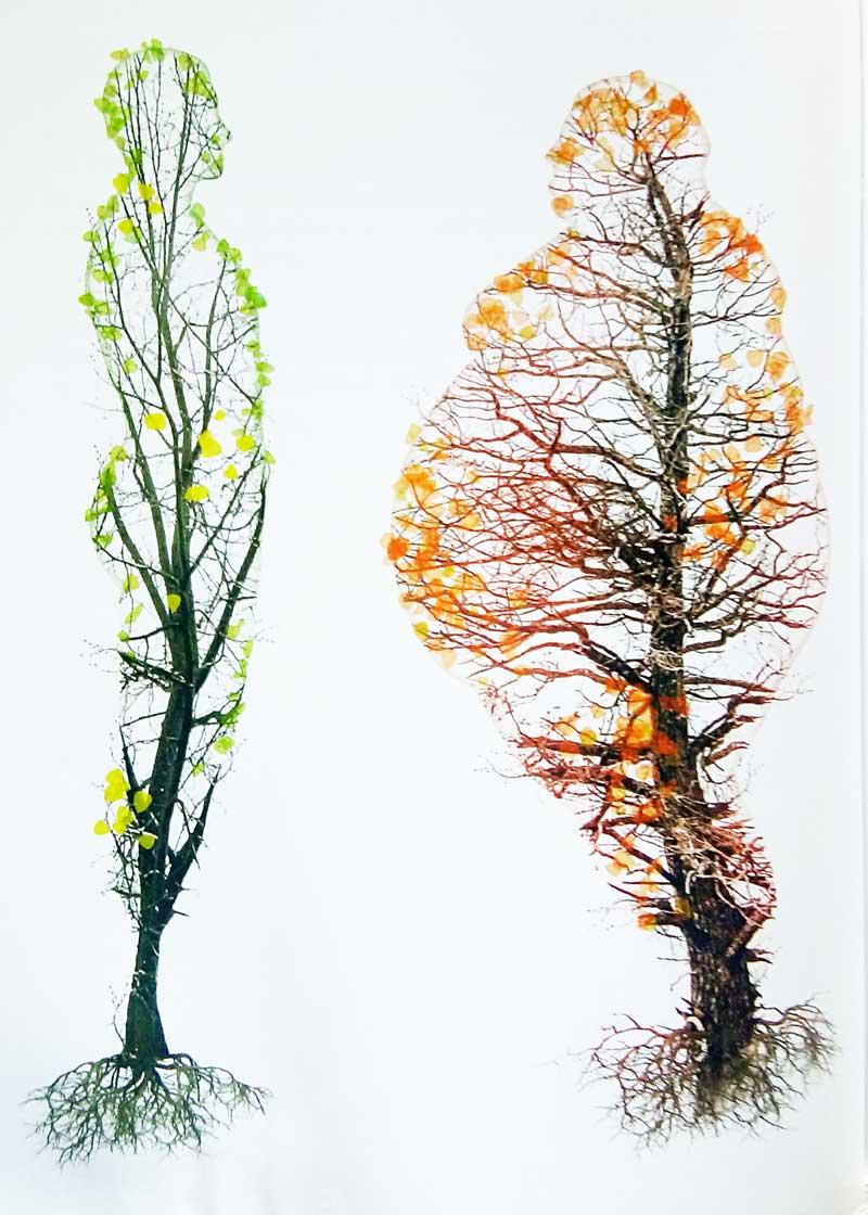 uomini-alberi